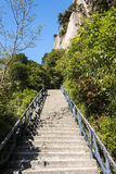 The steps of the mountain Stock Image