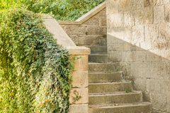 Steps of the old castle with green vegetation. Steps of the old castle, pouring vegetation, sunset. Old Park Garden royalty free stock photo