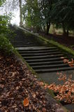 Steps in Park Stock Photography