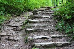 Steps On The Path Royalty Free Stock Image