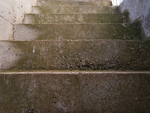 Steps with a patina of green moss Royalty Free Stock Photos
