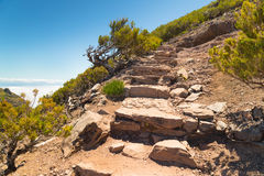 The steps put from stones, conducting to mountain top on Madeira Stock Photo
