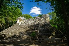 Steps of the pyramid stairs. Hidden in jungle Calakmul archeolog. Ical complex, Mexico royalty free stock photos