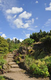 Steps through rock garden. View showing ascending steps through rock garde, Edinburgh Botanic gardens Stock Images