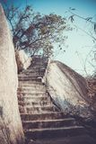 Steps in rocks and tree In retro style Stock Photos