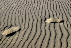 Steps on sand. Wet sand prints royalty free stock images