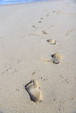 Steps in the sand. On a beach, fading in the distance royalty free stock photo