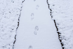 Steps on snow covered path Royalty Free Stock Photo