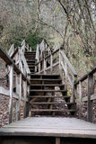 Steps Royalty Free Stock Photo