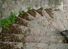 The steps of stone stairway Stock Image