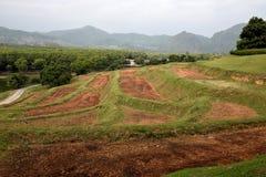 Steps for tea plantation Royalty Free Stock Photo