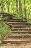 Steps to Nowhere! Stock Image