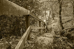 Steps to path at Hardcastle Crags in Yorkshire, England Royalty Free Stock Photography