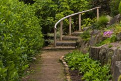 Steps to a rock garden. Royalty Free Stock Image