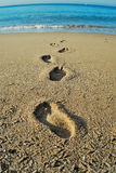 Steps to the sea royalty free stock photography