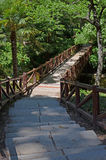 Steps to the wooden bridge. Steps to go down to the wooden bridge Royalty Free Stock Photography