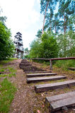 Steps to wooden tower in forest Royalty Free Stock Photo