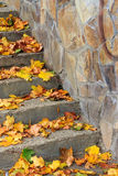 Steps on a town square covered with foliage Royalty Free Stock Image