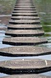 Steps in Water at Tirtagangga Water Palace Royalty Free Stock Photo