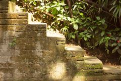 Some stone mossy stairs going up stock photo
