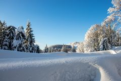 These are the steps of winter. royalty free stock image