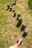 Steps in a wooden balance course Royalty Free Stock Images
