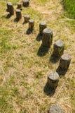 Steps in a wooden balance course Stock Photos
