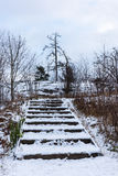 Steps of wooden stair in winter Royalty Free Stock Images
