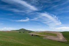 Steptoe小山 库存图片