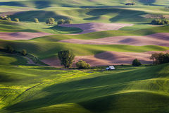 Steptoe Butte State Park. Royalty Free Stock Photo