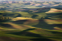 Steptoe Butte State Park. Stock Image