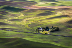 Steptoe Butte State Park. Stock Photography