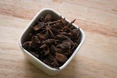Steranijsplant in ceramische container royalty-vrije stock foto's