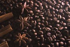 Steranijsplant en kaneelschors op de achtergrond van koffiebonen Stock Foto