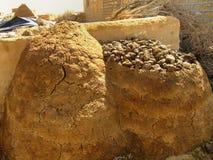 Sterco animale di secchezza vicino alla casa tradizionale in un piccolo villaggio, Th Immagini Stock