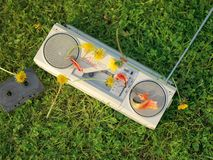 Stereo player and dandelions