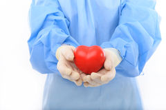 Sterile doctor holding heart Stock Images