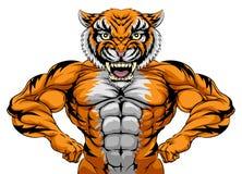 Sterk Tiger Sports Mascot Royalty-vrije Stock Fotografie
