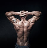 Sterke atletisch bemant terug op donkere achtergrond royalty-vrije stock afbeelding