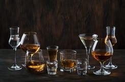 Sterke Geplaatste Geesten Harde alcoholische dranken in glazen in assortiment: wodka, cognac, tequila, brandewijn en whisky, grap royalty-vrije stock foto's