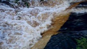Sterke Stroom van Bruin Vuil Regenwater stock videobeelden