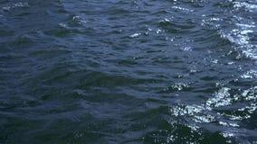 Sterke wind blazende overzeese golven stock videobeelden