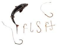 Sterlet e palavra frescos F MIM S H composto dos ganchos de peixes oxidados velhos Foto de Stock Royalty Free
