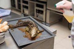 Sterlet préparé frais de poissons dans un four en métal de kitche de restaurant photo libre de droits