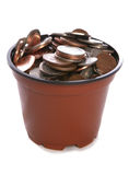 Sterling Money in plant pot. Studio cutout Royalty Free Stock Photography
