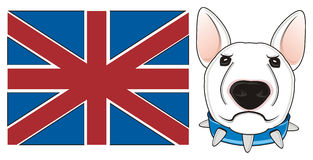 Stern dog with flag Stock Images