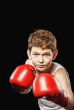 Stern look boxer Stock Photos