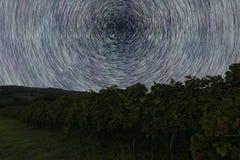 Stern-Spuren über Weinberg Startrails des nächtlichen Himmels Lizenzfreies Stockbild