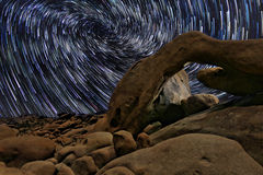 Stern-Spuren in Joshua Tree National Park am Bogen Stockfotos