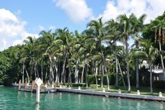 Stern-u. Palmen-Inseln Stockfoto